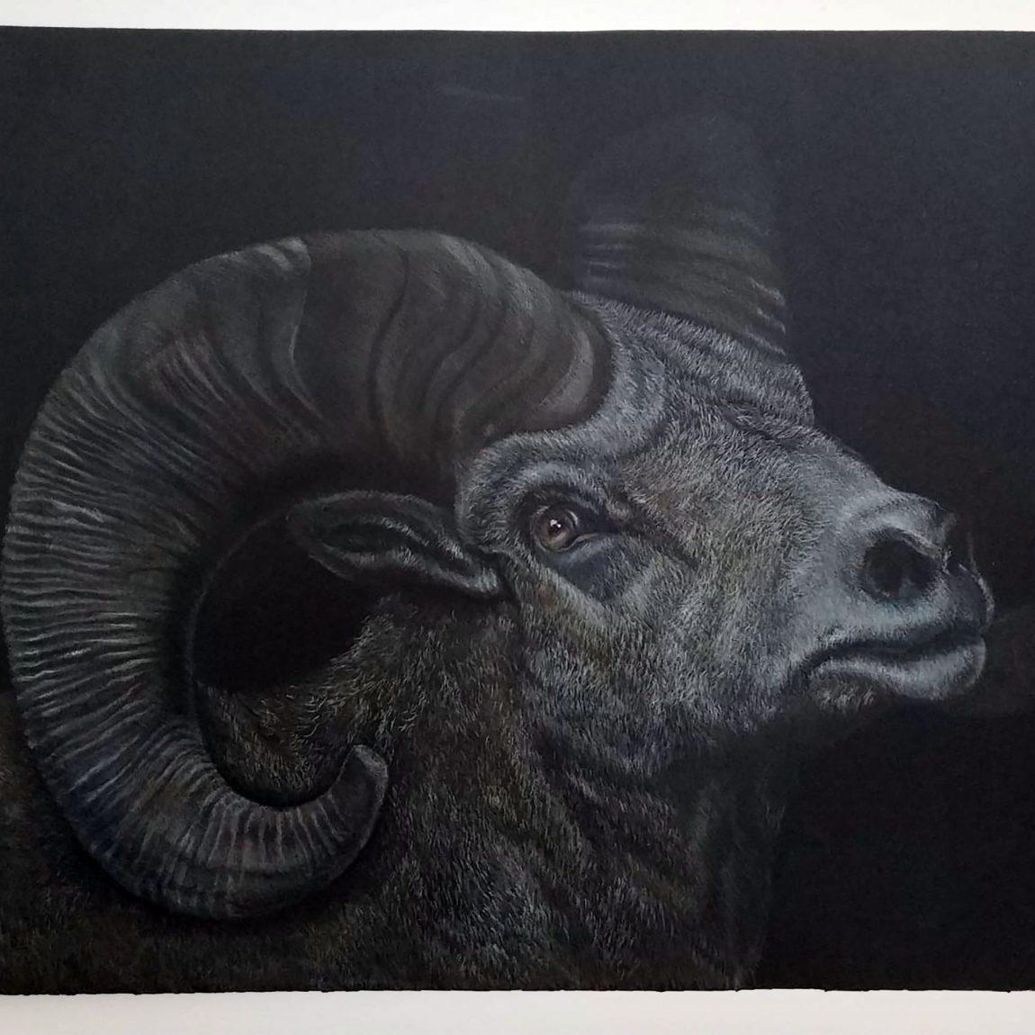 Karanlıkta Eriyen Koyun- 2021 Teknik: Kuru Boya Ölçü: 35x50 cm