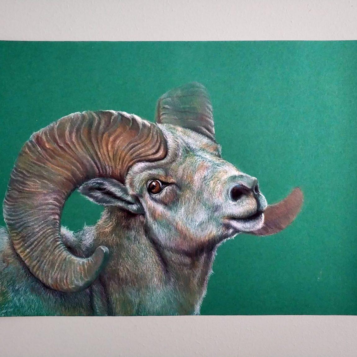 Yeşil Perde Önünde Yaban Koyunu -2020 Teknik: Kuru Boya Ölçü: 23,5X35 cm (2)